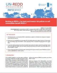 UNREDD_BANKING_ON_REDD_WEB_1__pdf__page_12_of_12_
