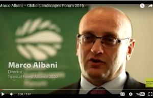 Marco Albani