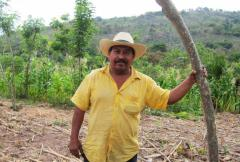 Turning restoration into good business for farmers in Guatemala