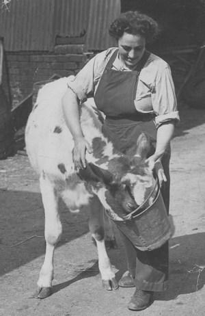 Alice Milnes at Manor Farm