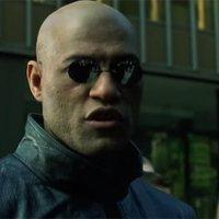 7 verrückte Fakten zur Matrix
