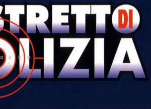 logo di distretto di polizia 11