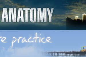 foto crossover grey's anatomy private practice