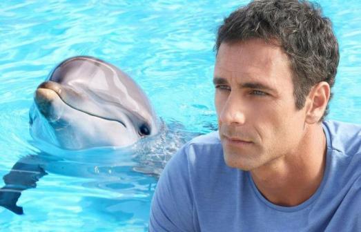 foto miniserie come un delfino 2