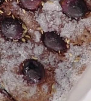 La prova del cuoco: schiacciata con uva Anna Moroni, torta cioccolato
