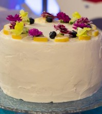 foto torta mirtilli