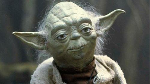 Yoda normal