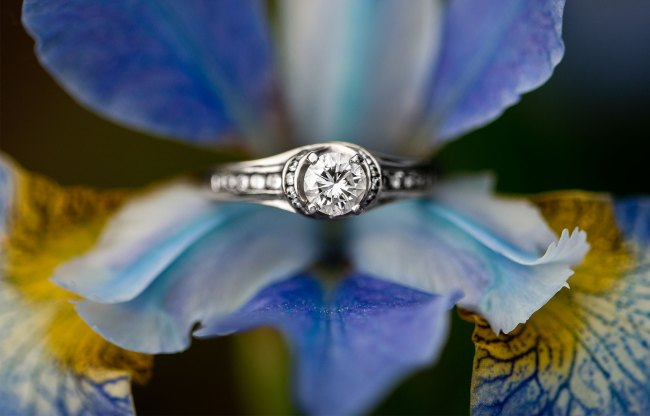 engagement ring in blue flower