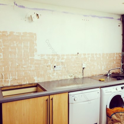 By the end of last weekend the kitchen looked like this...