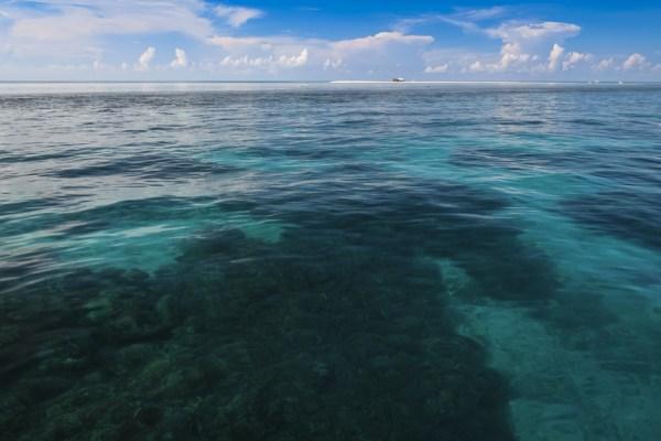 tubbataha reef seascape palawan philippines