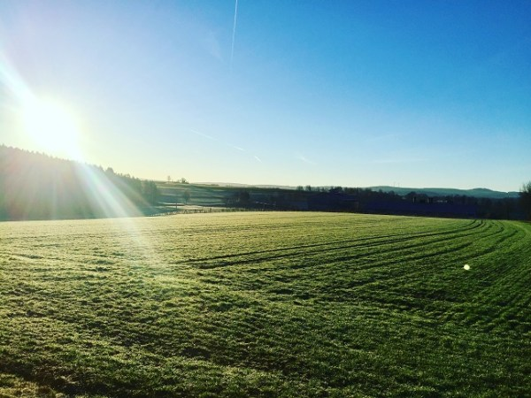 germany fields