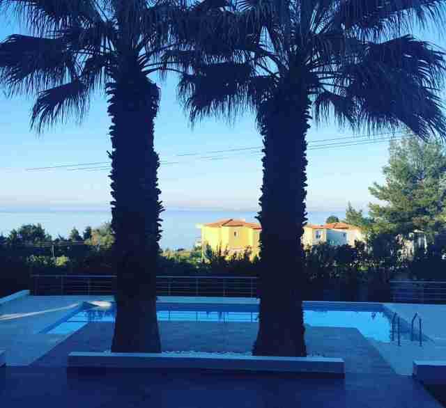 villa anna maria palm trees by pool dusk