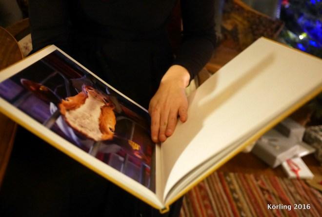 Böckerna vi tittade i. Hej HOPP / Anne-Marie Körling