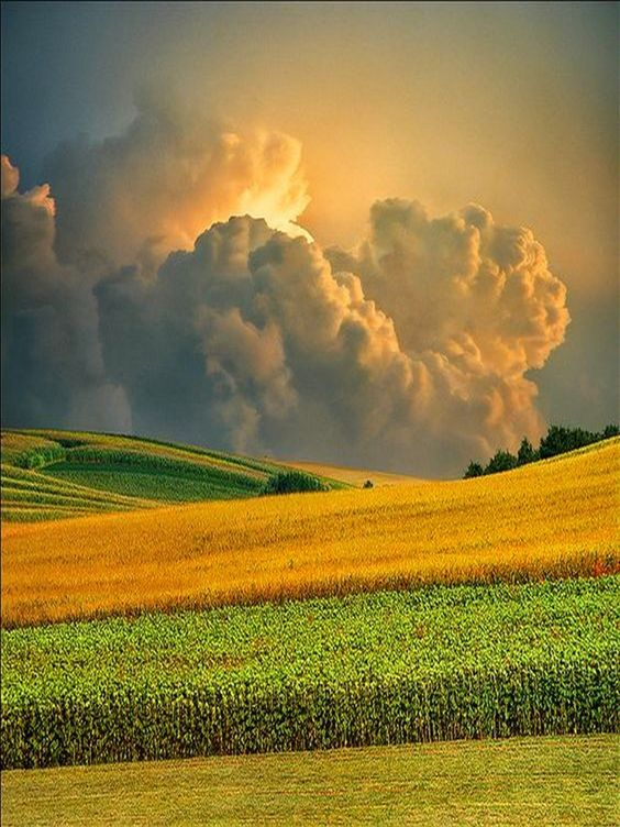 La nature incroyable Orage.jpg?zoom=1