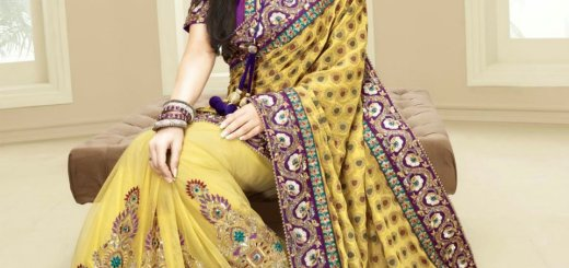 Indain bridal saree designs 2012