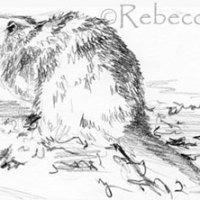 Beaver Painting