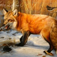 Completed Painting - Red Fox, Prairie Vole, & Junco