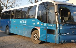 autobus-cotral-latina-bus
