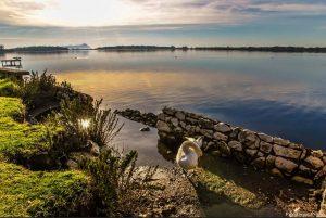 fogliano-lago-latina