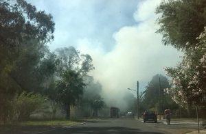 incendio-sabaudia-2015