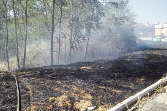 FOTO Incendio in zona Q4, vigili del fuoco in azione