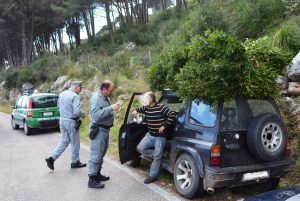 controllo-guardia-forestale-latina