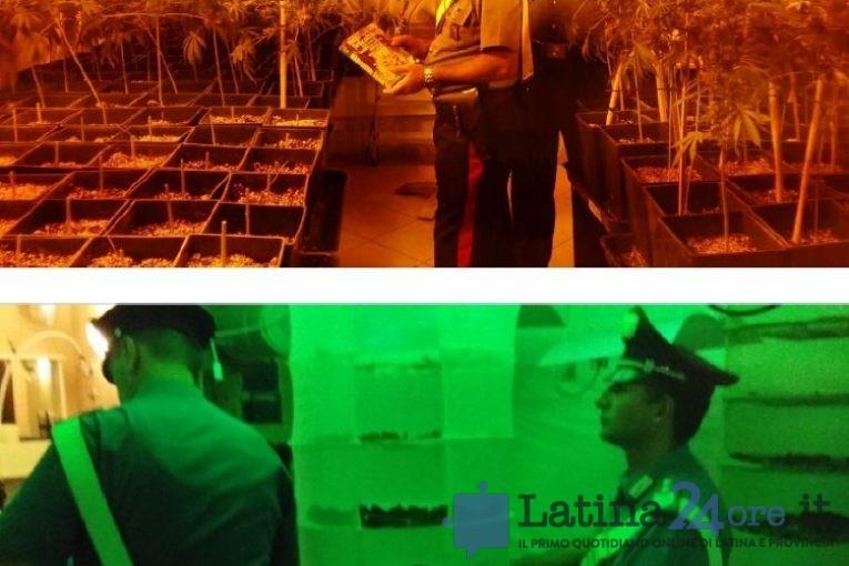 droga-operazione-amnesia-latina-0