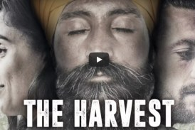 VIDEO The Harvest al cinema Corso di Latina con regista e attori