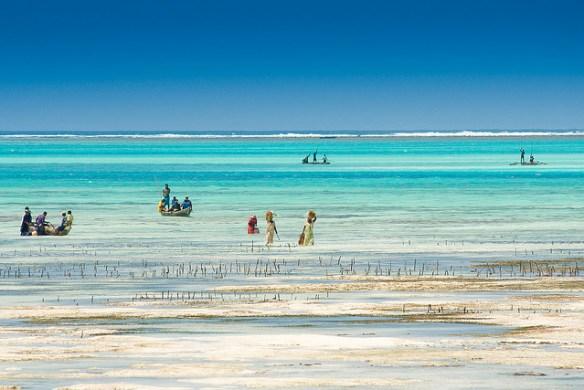 unique proposal destinations, Zanzibar