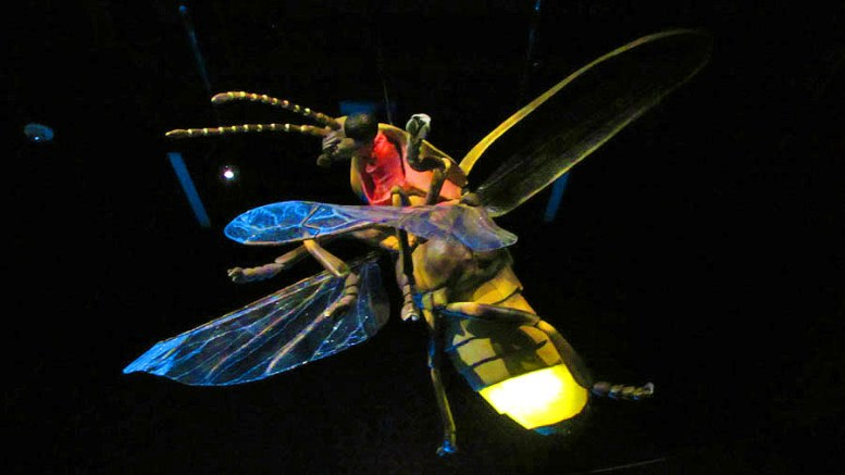 Creatures of Light & alebrijes  (19)