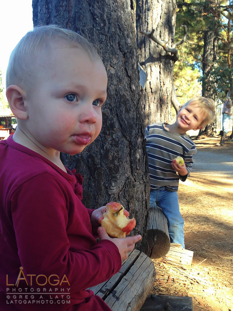 Caitlin and Matthew Enjoying Apple PIcking