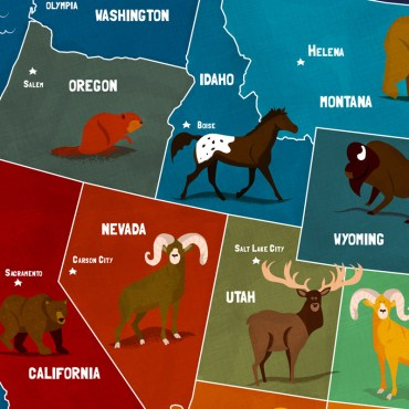 State Animals of the U.S.A.