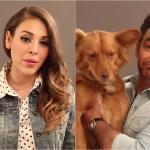 Eugenio Derbez, Danna Paola, Sofía Castro y otros famosos promueven la adopción de perros