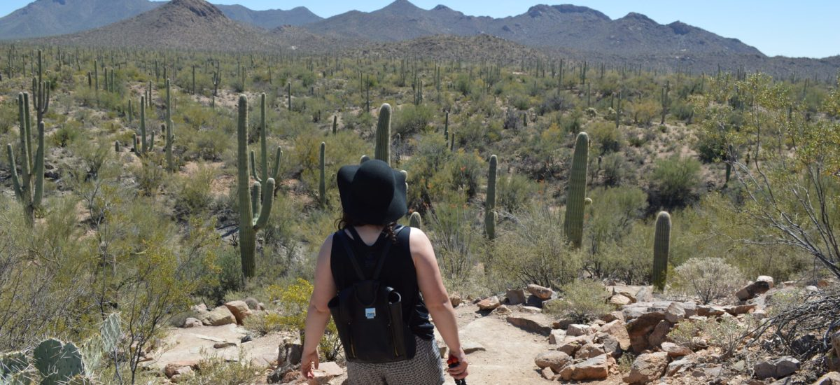 5 Free and Cheap Things To Do In Tucson