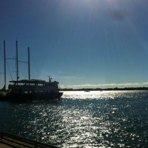 The beautiful view from the Harbourfront Centre in Toronto at the Word on the Street festival!