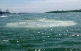 Captan extraño fenómeno en el río Pánuco