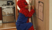A kid wearing a Spider-Man costume climbs a refrigerator. Cereal on top of the fridge? Sounds like a job for Spider-Man.
