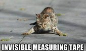 invisible-measuring-tape-lol-cat-meme-lawlz