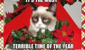 A funny Christmas card of a grumpy cat that is having the most terrible time of the year.