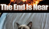 A 2012 end of the world grumpy cat meme showing the earth exploding. The end of the world is near. Good.