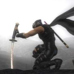 Ninja Gaiden developers prefer Move over Kinect