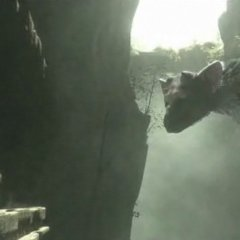 The Last Guardian release date incoming?