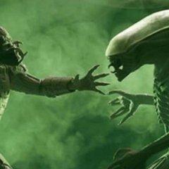 Get Aliens vs Predator for free on GoG