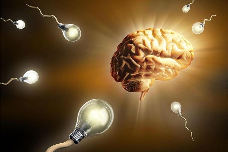 cognitive enhancement myths