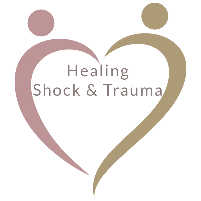 Seminar-Healing-Shock-Trauma-B