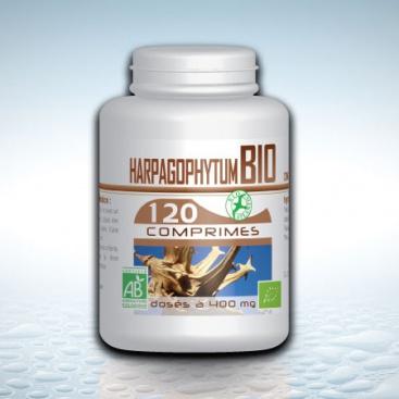 harpagophytum-bio-120-comprimes