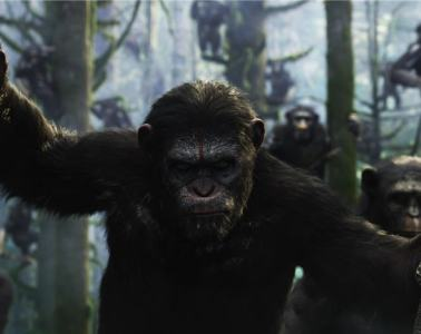 1924797-la-planete-des-singes-l-affrontement-de-matt-reeves