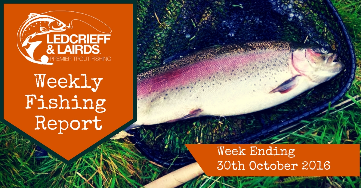 fishing-report-cover-w%2fe-30th-oct