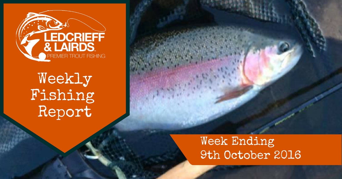 fishing-report-cover-w%2fe-9th-oct