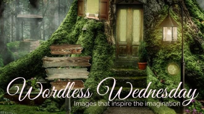 wordless-wednesday-1